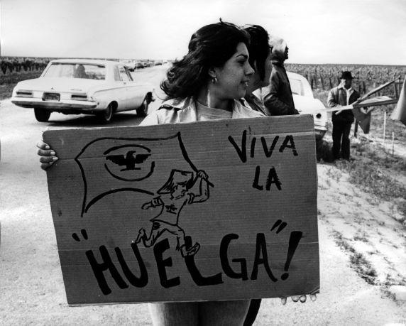 (240) Demonstration, Coachella Strike, Coachella Valeey, California, c. 1970s