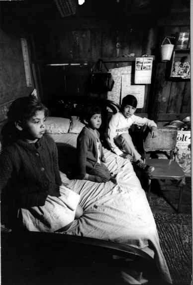 (247) Living Conditions, Labor Camp, Florida, 1969