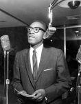 (24877) NAACP, Portrait, Arthur Johnson