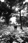 """(25419) Civil Rights, Demonstrations, """"March on Washington,"""" 1963"""