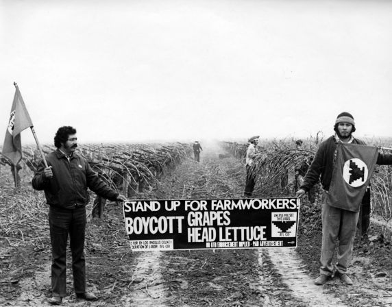 (257) Pickets during the grape and lettuce strike
