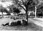 (26068) Riots, Rebellions, US Army, Southeastern High School, 1967