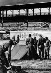 (26098) Riots, Rebellions, U.S. Army, Living Conditions, State Fairgrounds, 1967