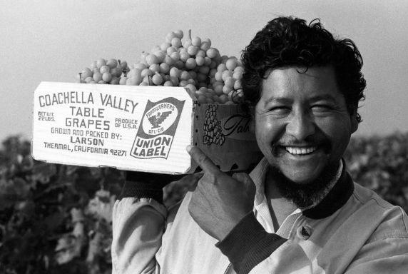 (26490) Richard Chavez, Larson, Coachella Strike, 1970s