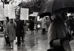 (26846) Council 13 protests