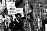(29053) Farah Slacks boycott