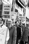 (29054) Farah Slacks protest