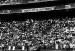 "(29327) ""Simon - We're Not Simple,"" Rally for Jobs Now, Robert F. Kennedy Stadium, Washington, D.C., 1975"