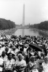 (29495) Martin Luther King March, Washington, D.C., 1983