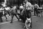 (30577) Civil Rights, Segregation, Demonstrations, Police Violence, 1963
