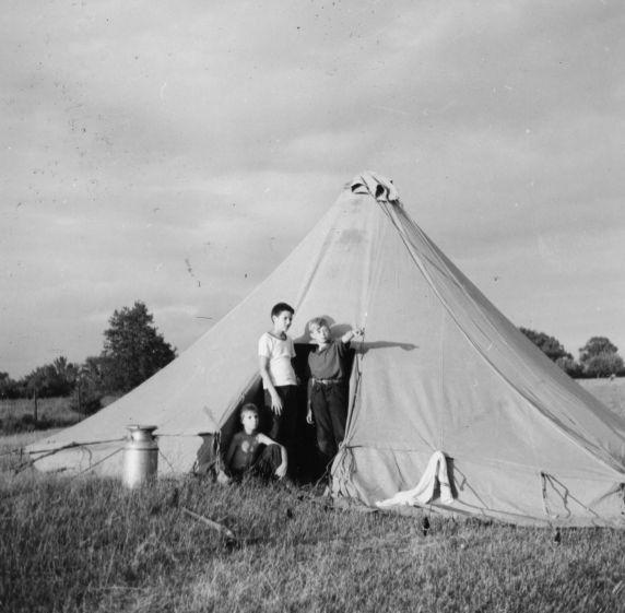 (32333) Three Boys in Tent, Merrill-Palmer Summer Camp
