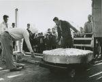(33575) Pie baking event