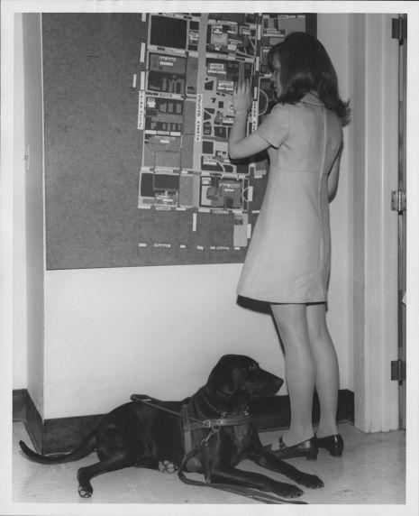 (35991) Braille Campus Map, 1969