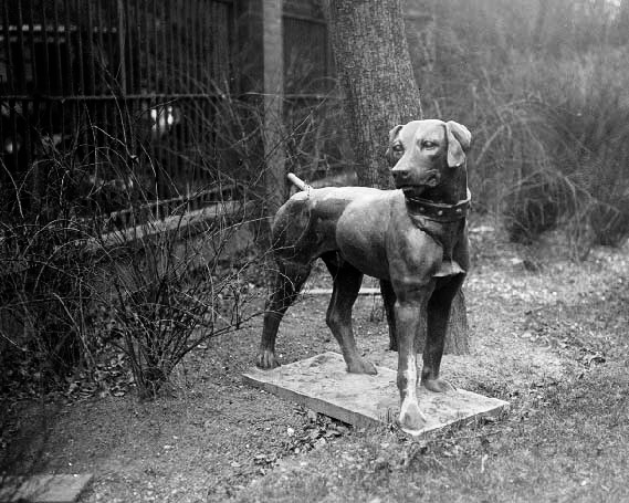 (44361) Statue of a Dog