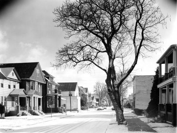 (WSAV002727_040) Poletown, Residential Views, Kanter Street, 1981