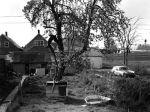 (WSAV002727_083) Neighborhood Views, Adele Street, Poletown, April 1981